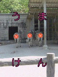 競走馬研究会