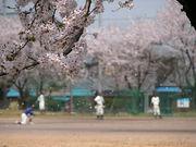 武生高校野球部