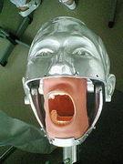 (・皿・)歯科専・39期生(・皿・)