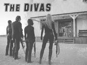 �ǥإӰŻ��� <The DiVAS>