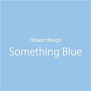 ☆SOMETHING BLUE☆