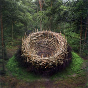 �Ķ��ݽ�  (Environment Art)