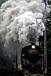蒸気機関車の爆煙に魅力を感じる