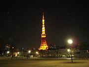 Tokyo snatch
