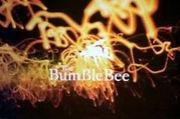 BarBumBleBee