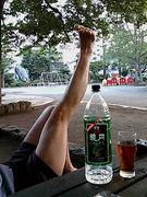 公園で乾杯の会。