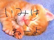 6年3組ぃ!イトゥー先生〜!!!