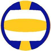 愛西市民バレーボール