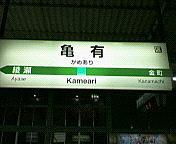亀っ子(´・ω・`)