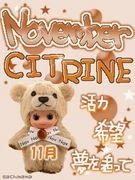 Novenber CITRINE