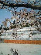 陶都中学校1999年卒業☆