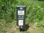 英国犬生活
