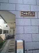 ニート株式会社