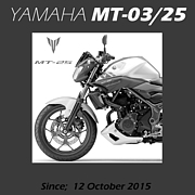 MT-03/MT-25