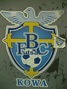 Nisseis do Brasil 大原OB BFC