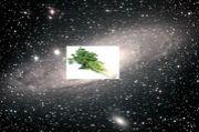 セロリの味は宇宙の味