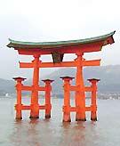 広島好きの関東人きんさい