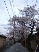 鎌倉の東部地域