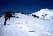 スキー場の情報
