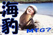 企画倒れの海豹MTG