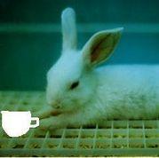 ひとりcafe*
