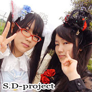 S.D-project