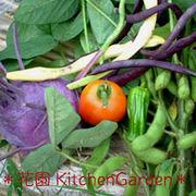 *花園KitchenGarden*