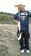 surf & fish !!