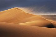 砂に消えた『  』を拾い集めて