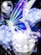 Angel Eden 《天使の楽園》