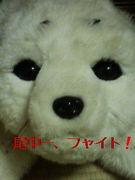 尾島中同窓会 1998年度卒業生