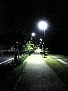 夜道が好き