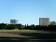 ★神宮で草野球をしよう★