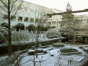 菊里2004