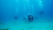 ダイビングだよ日本海