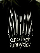 another sunnyday