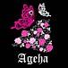 ageha(山口女性ダーツチーム)