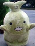 豊川南部中学校2001年卒