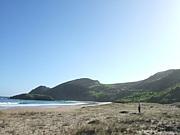 NZの釣り(アウトドア)