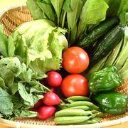 みんなの菜食生活日記!