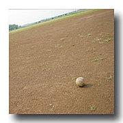 三重で草野球