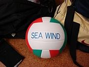 バレーボール SEA WIND (横浜)