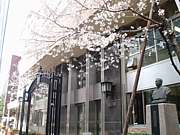 法桜祭実行委員会OB会