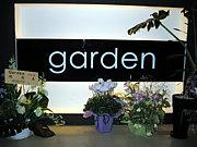 Darts Cafe Garden心斎橋