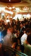 Tokyo Lounge Lover