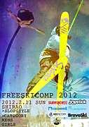 FREESKICOMP2012