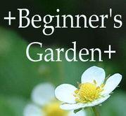 初心者の庭・Beginner's Garden