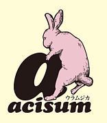 Acisum@ACTIVE ONE
