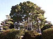 後藤寺小学校