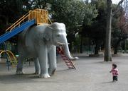 ☆象さんは乾燥肌☆